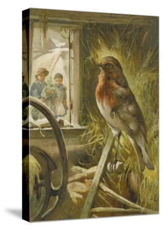 Two Children Watch a Robin the Barn Who is Standing on One Leg-John Lawson-Stretched Canvas Print