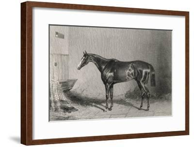 Portrait of the Racehorse Harkaway Who Won the 1838 Goodwood Cup in His Stable-W.b. Scott-Framed Giclee Print