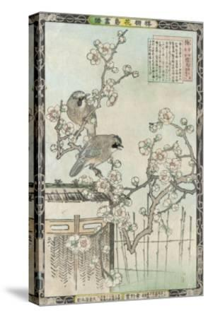 Springtime in Japan, Cherry Blossom and a Pair of Birds--Stretched Canvas Print