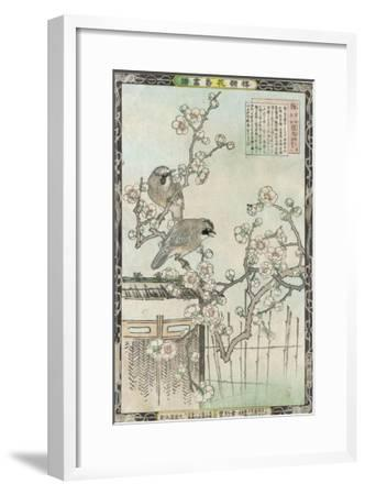 Springtime in Japan, Cherry Blossom and a Pair of Birds--Framed Giclee Print