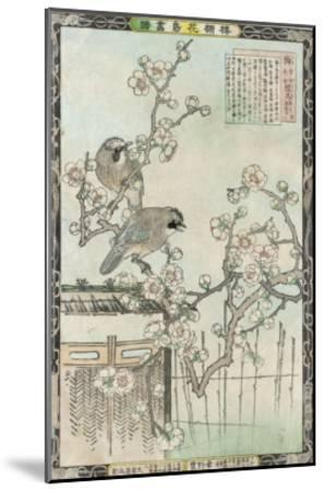 Springtime in Japan, Cherry Blossom and a Pair of Birds--Mounted Giclee Print