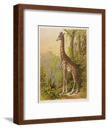 Standing Tall in the African Jungle--Framed Giclee Print