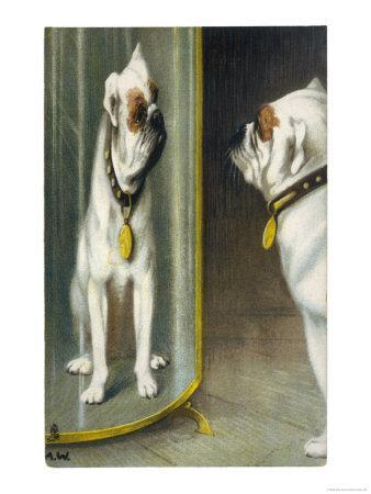 Bulldog Admires Its Reflection in a Distorting Mirror--Framed Giclee Print