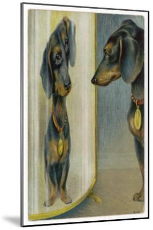 Dachshund Admires Its Reflection in a Distorting Mirror--Mounted Giclee Print