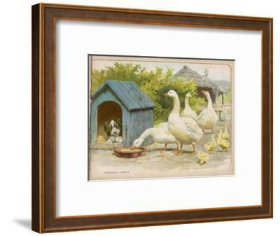 Geese and a Kenneled Dog--Framed Giclee Print