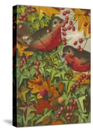 Two Robins Among Berries--Stretched Canvas Print