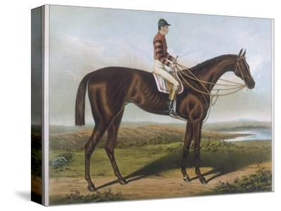 Winner of the Derby and St. Leger in 1881--Stretched Canvas Print