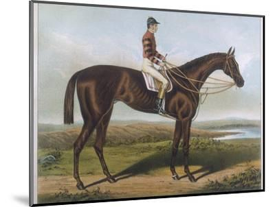 Winner of the Derby and St. Leger in 1881--Mounted Premium Giclee Print