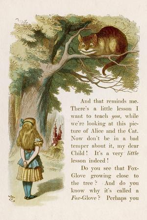 Alice and the Cheshire Cat-John Tenniel-Stretched Canvas Print