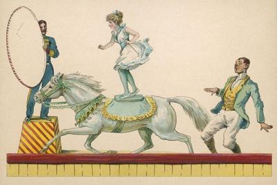 Girl Standing on the Back of a Grey Horse Prepares to Jump Through a Paper Hoop--Stretched Canvas Print