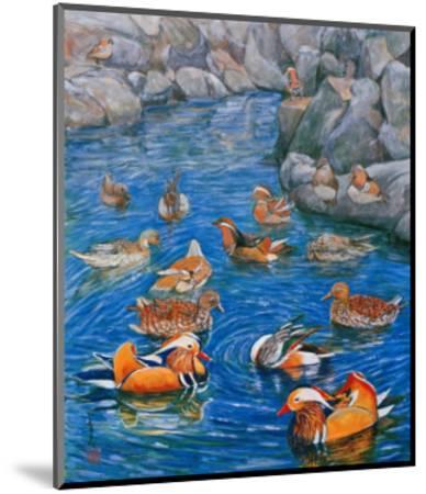Mandarin Ducks-Komi Chen-Mounted Premium Giclee Print