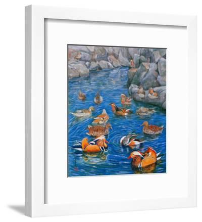 Mandarin Ducks-Komi Chen-Framed Giclee Print