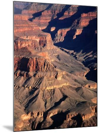 Overhead of South Rim of Canyon, Grand Canyon National Park, U.S.A.-Mark Newman-Mounted Photographic Print