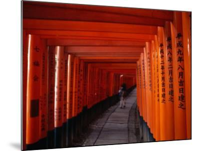 Traditional Torii with Inscription at Fushimi Inari Shrine Near Kyoto, Kyoto, Kinki, Japan-Christopher Groenhout-Mounted Photographic Print