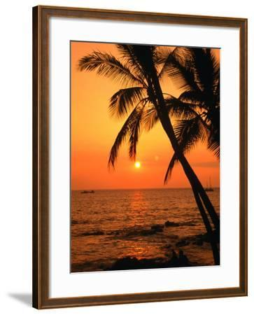 A Couple in Silhouette, Enjoying a Romantic Sunset Beneath the Palm Trees in Kailua-Kona, Hawaii-Ann Cecil-Framed Photographic Print