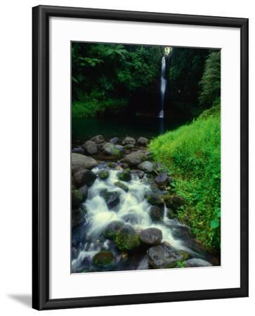 Water Streaming Over Rocks at Olemoe Waterfall, Olemoe Falls, Samoa-Tom Cockrem-Framed Photographic Print