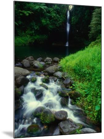 Water Streaming Over Rocks at Olemoe Waterfall, Olemoe Falls, Samoa-Tom Cockrem-Mounted Photographic Print