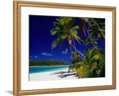Beach with Palm Trees on Island in Aitutaki Lagoon,Aitutaki,Southern Group, Cook Islands-Dallas Stribley-Framed Photographic Print