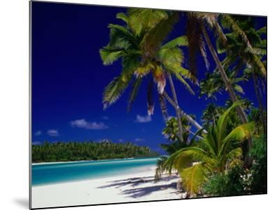 Beach with Palm Trees on Island in Aitutaki Lagoon,Aitutaki,Southern Group, Cook Islands-Dallas Stribley-Mounted Photographic Print