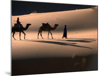Camel Caravan Crossing Dunes, Erg Chebbi Desert, Morocco-John Elk III-Mounted Photographic Print