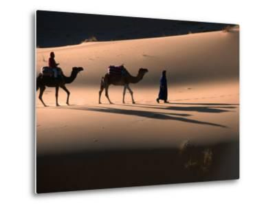 Camel Caravan Crossing Dunes, Erg Chebbi Desert, Morocco-John Elk III-Metal Print