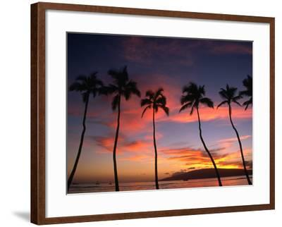 Coconut Palms and the Island of Lanai at Sunset from the Seawall on Front Street, Lahaina, Maui-Karl Lehmann-Framed Photographic Print