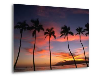 Coconut Palms and the Island of Lanai at Sunset from the Seawall on Front Street, Lahaina, Maui-Karl Lehmann-Metal Print