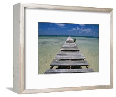 Wooden Pier with Broken Planks, Ambergris Caye, Belize-Doug McKinlay-Framed Photographic Print
