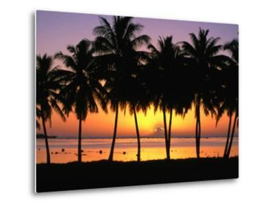 Palm Trees at Sunset, Cook Islands-Peter Hendrie-Metal Print