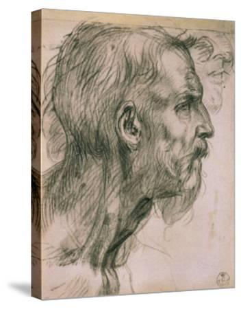 Drawing with Male Profile, in the Uffizi Gallery, in the Gabinetto Dei Disegni E Delle Stampea-Andrea del Sarto-Stretched Canvas Print