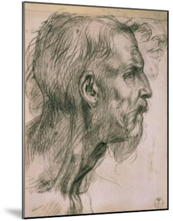 Drawing with Male Profile, in the Uffizi Gallery, in the Gabinetto Dei Disegni E Delle Stampea-Andrea del Sarto-Mounted Giclee Print