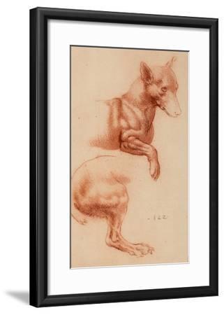 Study of a Pomeranian Dog, Drawing, Royal Library, Windsor-Leonardo da Vinci-Framed Giclee Print