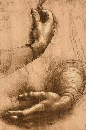 Study of Female Hands, Drawing, Royal Library, Windsor-Leonardo da Vinci-Stretched Canvas Print