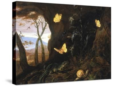 Underbrush with Reptiles and Butterflies, Uffizi Gallery, Florence-Otto Marseus Van Schrieck-Stretched Canvas Print