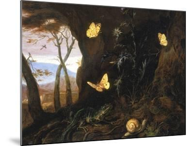 Underbrush with Reptiles and Butterflies, Uffizi Gallery, Florence-Otto Marseus Van Schrieck-Mounted Giclee Print