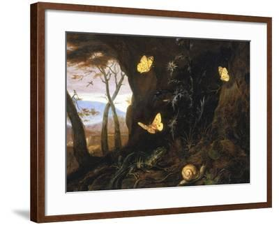 Underbrush with Reptiles and Butterflies, Uffizi Gallery, Florence-Otto Marseus Van Schrieck-Framed Giclee Print