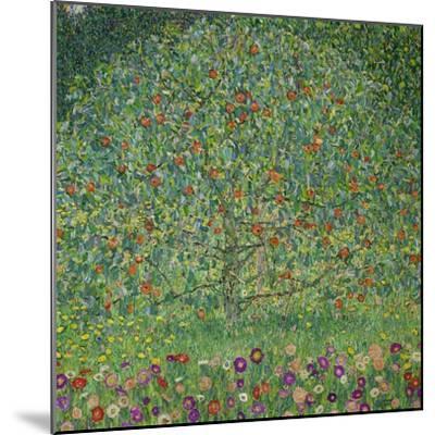 Apple Tree, 1912-Gustav Klimt-Mounted Premium Giclee Print