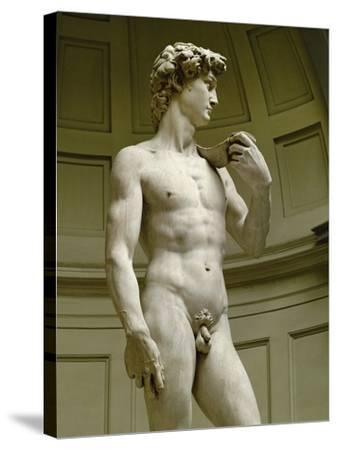 David, 3/4 Profile-Michelangelo Buonarroti-Stretched Canvas Print