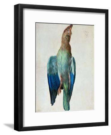 Roller (Bird), 1512-Albrecht D?rer-Framed Giclee Print