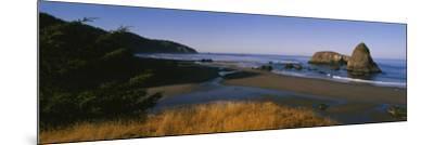 Rocks on the Beach, Cannon Beach, Oregon, USA--Mounted Photographic Print