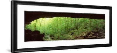 Forest, Cobb Cave, Lost Valley, Ozarks, Arkansas, USA--Framed Photographic Print