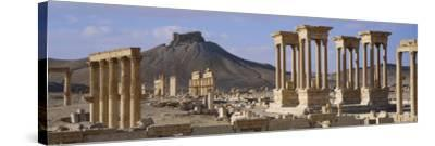 Colonnades on an Arid Landscape, Palmyra, Syria--Stretched Canvas Print