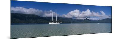Sailboat in a Bay, Kaneohe Bay, Oahu, Hawaii, USA--Mounted Photographic Print