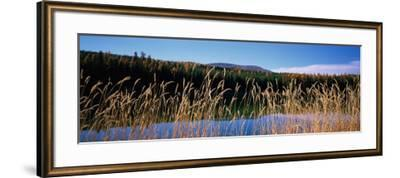 Reflection of Hills on Water, Rainy Lake, Montana, USA--Framed Photographic Print