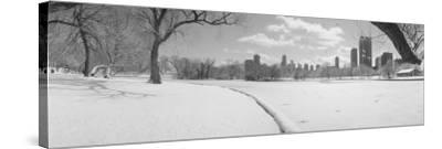 Lincoln Park, Chicago, Illinois, USA--Stretched Canvas Print