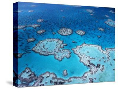 Aerial View of Hardy Reef, Great Barrier Reef and Sea, Queensland, Australia-Jurgen Freund-Stretched Canvas Print