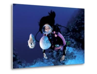 Diver with Pair of Pearly Nautilus, Great Barrier Reef, Queensland, Australia-Jurgen Freund-Metal Print
