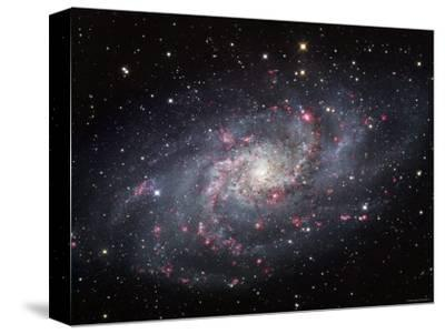 The Triangulum Galaxy-Stocktrek Images-Stretched Canvas Print