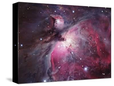 A Close up of the Orion Nebula-Stocktrek Images-Stretched Canvas Print