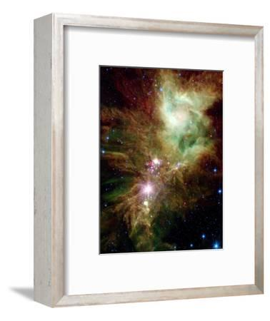 Christmas Tree Cluster-Stocktrek Images-Framed Photographic Print